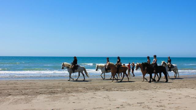 balade-cheval-plage-camargue-cchillio-4.jpg